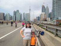 Toronto Cityline as seen from the Gardnier Expressway