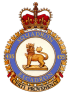 435_Transport_and_Rescue_Squadron