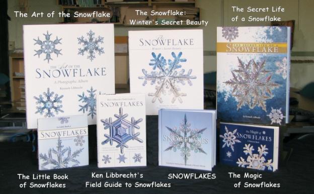 snowflake books