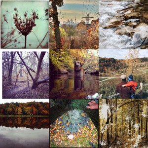 Fall4Ravines Collage 1